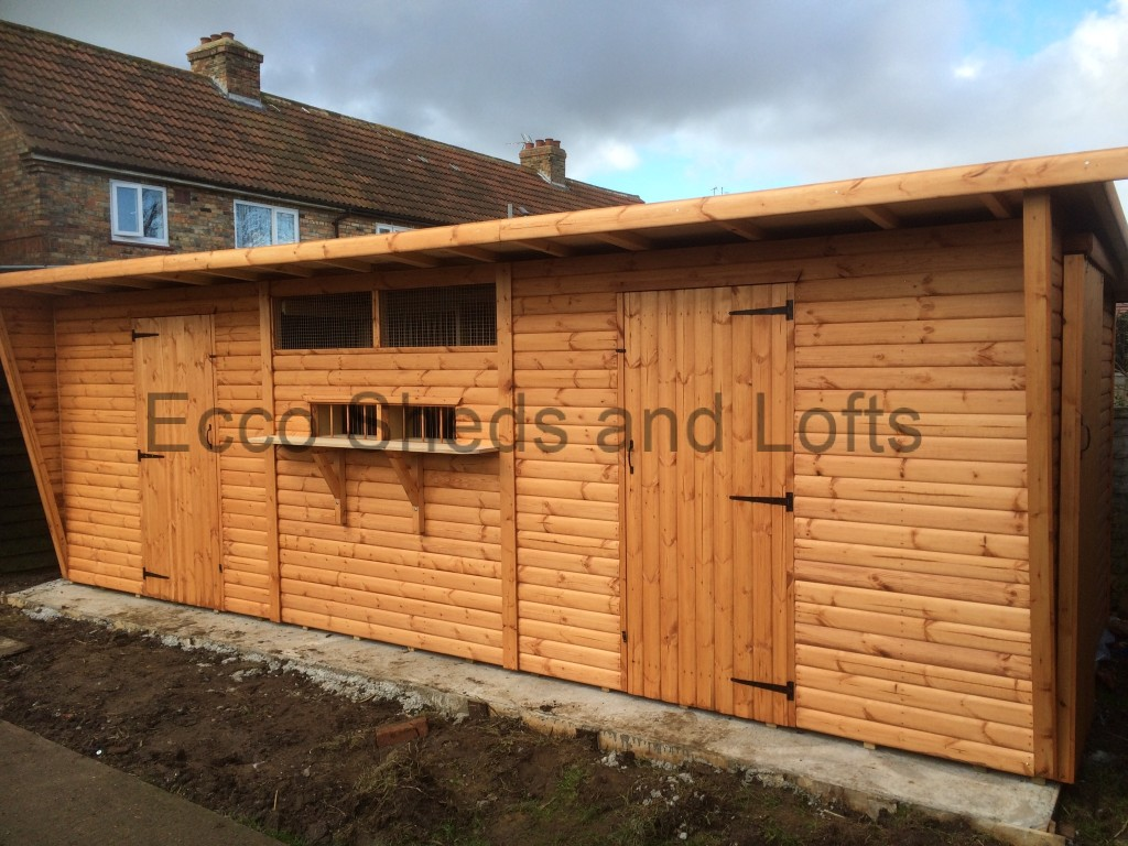 Pigeon Lofts - Ecco Sheds and Pigeon Lofts