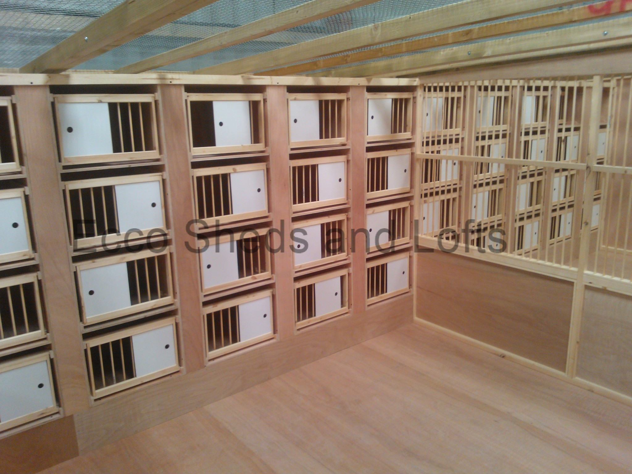 Pigeon Nest Boxes and Perches - Ecco Sheds and Pigeon Lofts